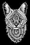 Serval - ink illustration