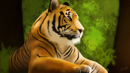 Tiger - Courage behind the silence