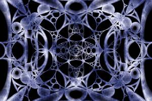 Apollonian Web II by rosshilbert