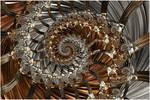 Multidimensional Wormhole