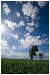 Wonderful Day by leavenotrase