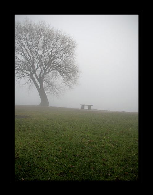 Stillness by leavenotrase