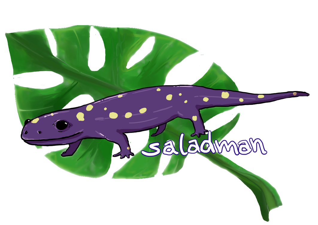 Saladman by cat-women2