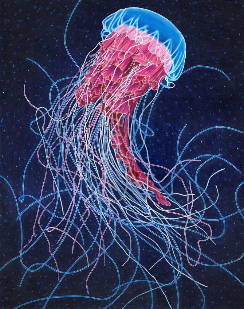 mixed media jellyfish by NegativeSanction