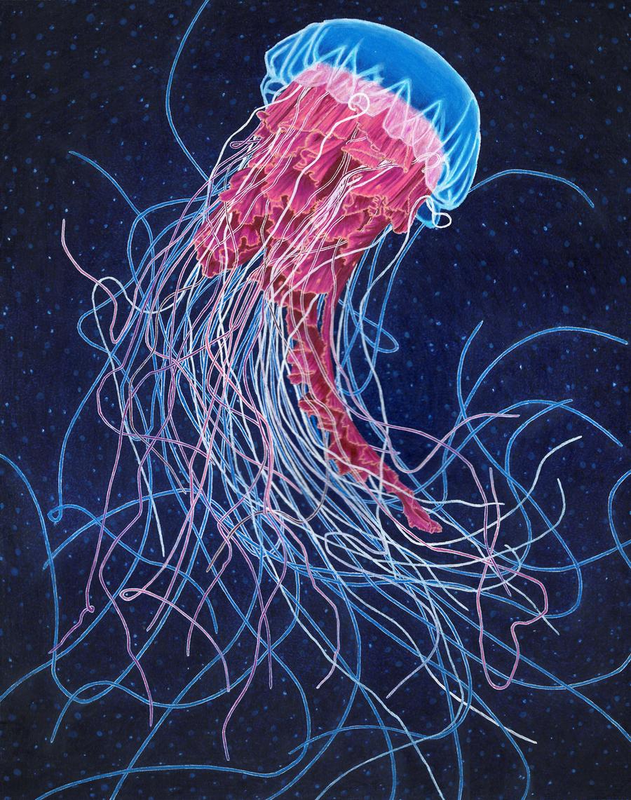 mixed media jellyfish by NegativeSanction on DeviantArt