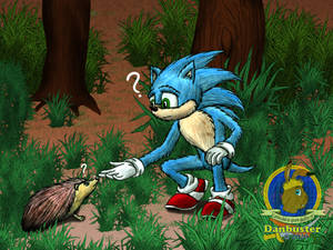 Sonic and Hedgehog