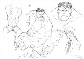 The Incredible Hulk by DenisM79