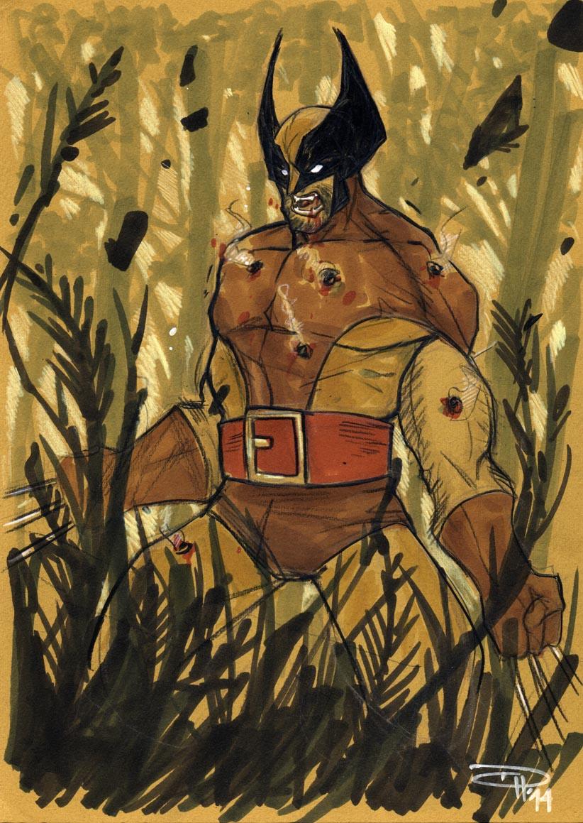 Wolverine by DenisM79