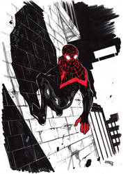Ultimate Spiderman by DenisM79