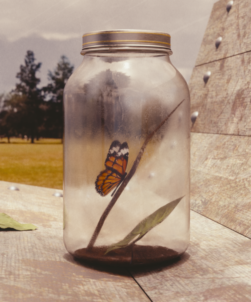 Butterfly in a Jar by TexasFunk101