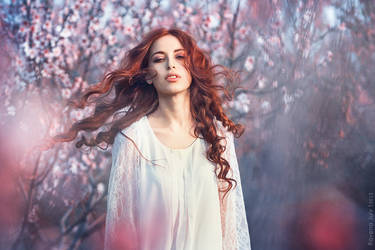 Natalis Domini. Spring Garden by RavenaJuly