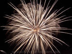 White Firework