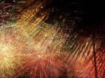 Tropical Fireworks