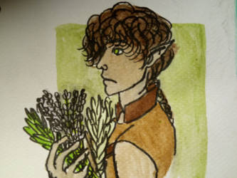 9. Herbs