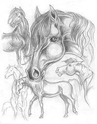 Horses by pezini