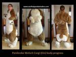 Ein the corgi progress