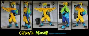 Macawfullsuit