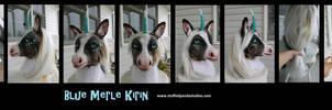 Blue Merle Kirin (corgi/unicorn/koi)