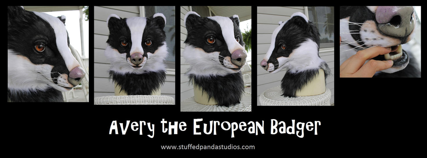 Avery the Europen Badger by stuffedpanda-cosplay