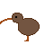 Little Kiwi.com