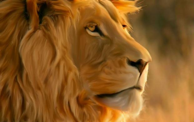 Painted Lion by Kenekochan01
