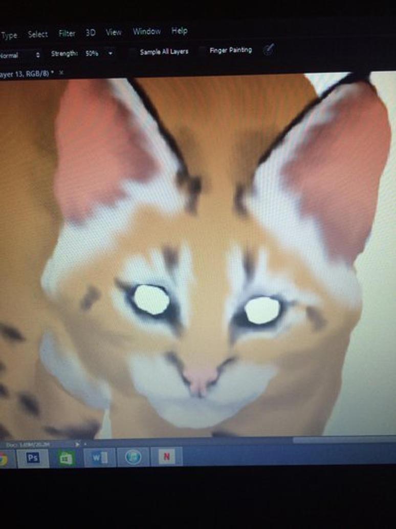 Wild Cat WIP by Kenekochan01