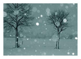 Snowing. by Nuneth