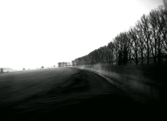Morning fog by SerpentsCreation