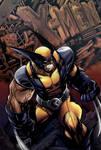 X-men Wolverine  (colors)