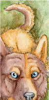 ACEO: Endlen by SaQe