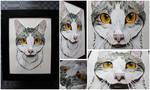 Commissions: 3D - Portrait - Gray petcat