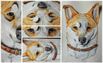 Commissions: 3D - Portrait - Riku