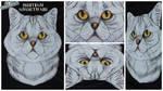3D - Portraits: British Shorthair