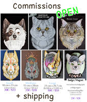 COMMISSIONS OPEN by SaQe