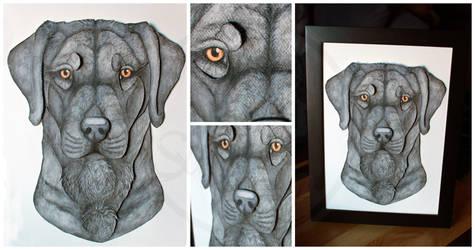 Commissions: 3D - Portrait - Nero by SaQe