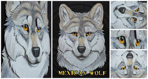 Commissions: 3D - Portrait - Mexican wolf by SaQe