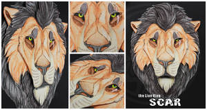 3D - Portraits: Scar by SaQe