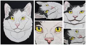Commissions: 3D - Portrait - B/W Domestic Cat by SaQe