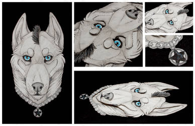 Commissions: 3D - Portrait - Theo