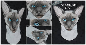 3D - Portraits: Siamese cat by SaQe