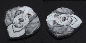 Commissions: Petit Basset Griffon Vendeen