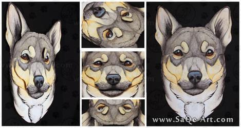 3D - Portraits: Swedish Vallhund by SaQe