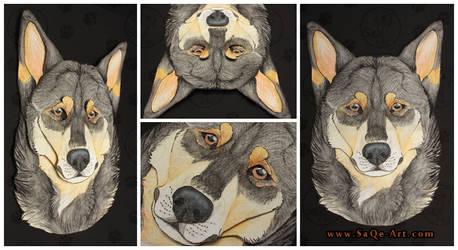 Commissions: 3D - Portrait - Black LapponianHerder