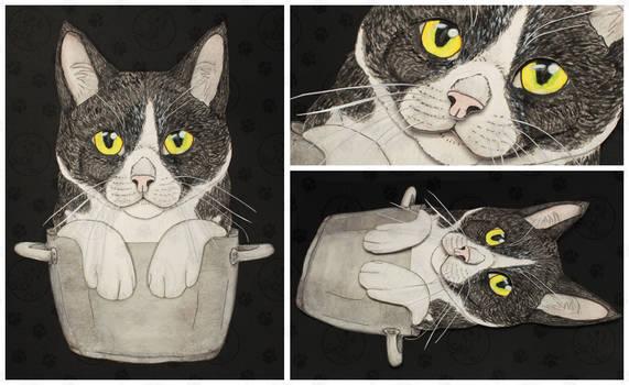 Commissions: 3D - Portrait - Kattila