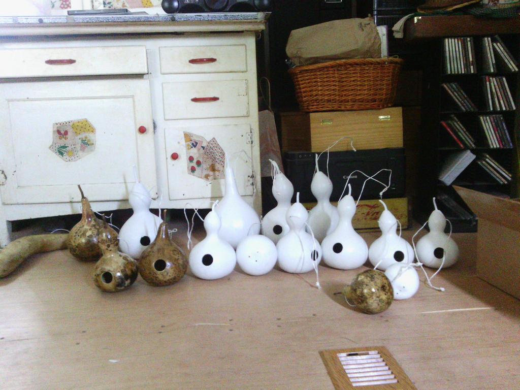 Birdhouse Gourds '18 by Sniffs