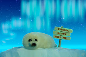 Stop The Seal Hunt! by GreenVoice