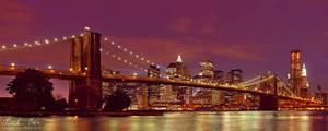 New York Skyline at night by Nightline