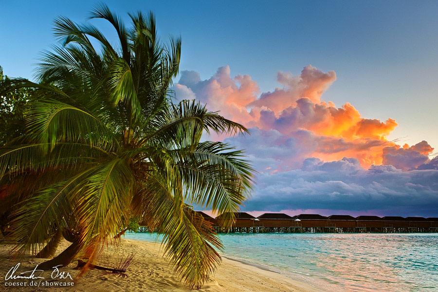 Maldives 3 by Nightline