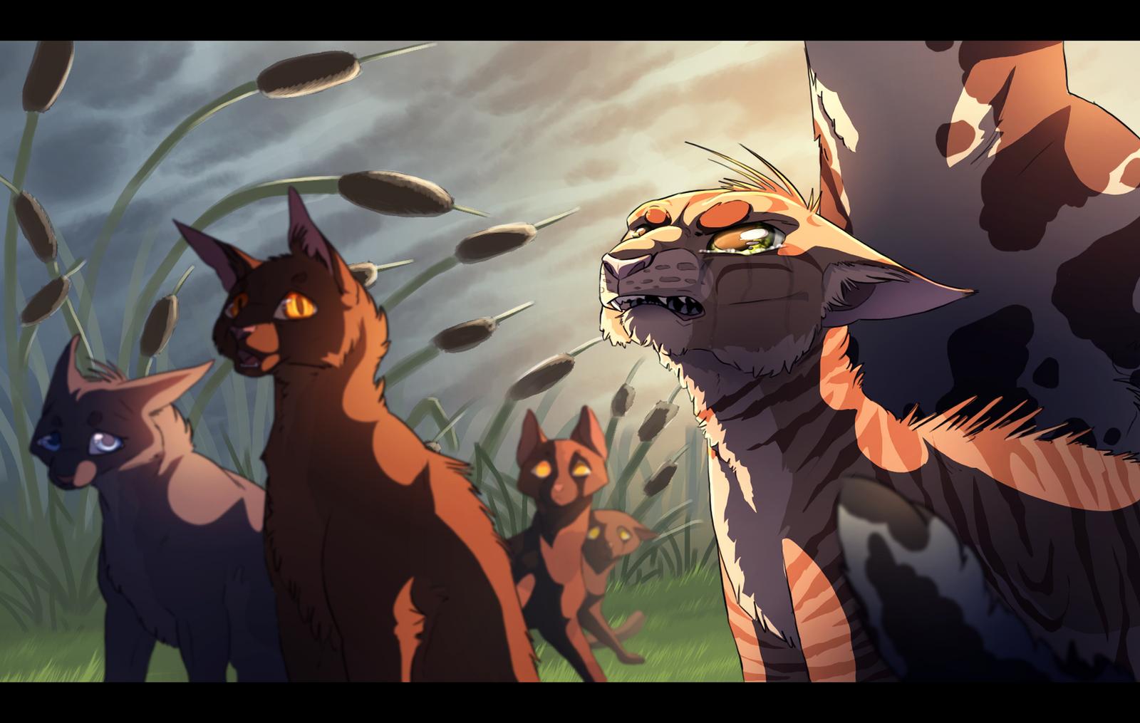 Warrior Cats Rainfall