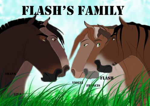 Flash's Family